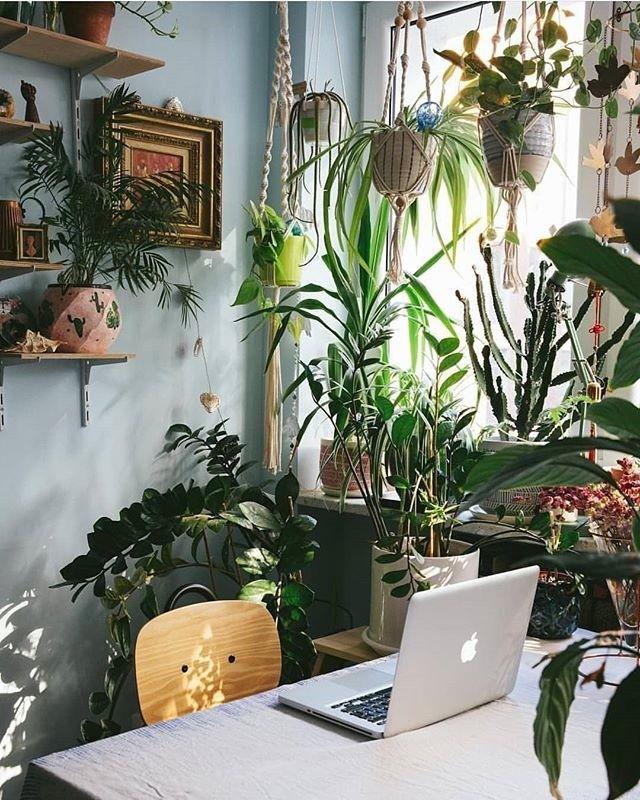 What a dreamy desk set-up! 😍 who else would like to work from this spot? // @warsawjungle via @workhardanywhere⠀⠀⠀⠀⠀⠀⠀⠀⠀ .⠀⠀⠀⠀⠀⠀⠀⠀⠀ .⠀⠀⠀⠀⠀⠀⠀⠀⠀ .⠀⠀⠀⠀⠀⠀⠀⠀⠀ . ⠀⠀⠀⠀⠀⠀⠀⠀⠀ .⠀⠀⠀⠀⠀⠀⠀⠀⠀ .⠀⠀⠀⠀⠀⠀⠀⠀⠀ #workhardanywhere #plantgoals#deskgoals #officeinspo #interiorinspo #deskenvy #workspacestyling #officeenvy #minimal #officeinspiration #workspaceinspo #desksituation #onmydesk #inspohome #deskinspiration #plantgoals #workingspace #workspace #deskinspo #deskstyling #homeoffice #officegoals #workspaces #scandinavianhome #interiors #workstation  #minimalsetups #designyourworkspace #setupinspiration