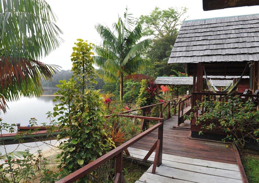 River Lodge (Suriname).jpg