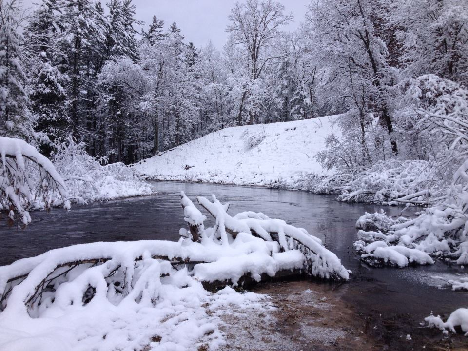 Little Manistee River, December.jpg