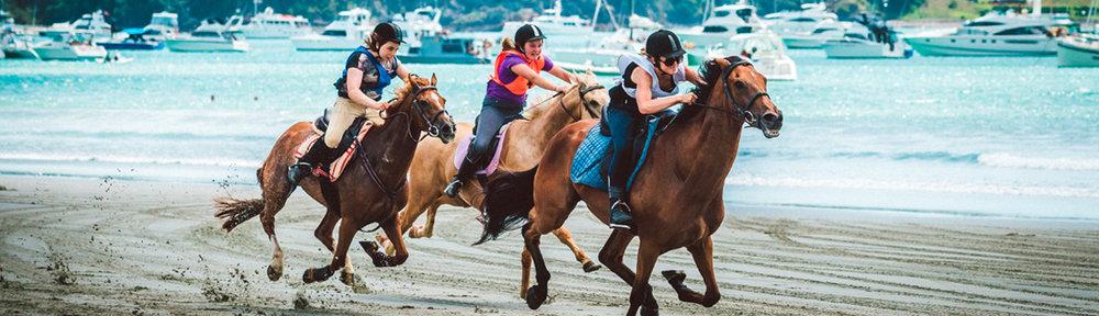 Onetangi Beach Races 2016 / Photo:  PETER REES