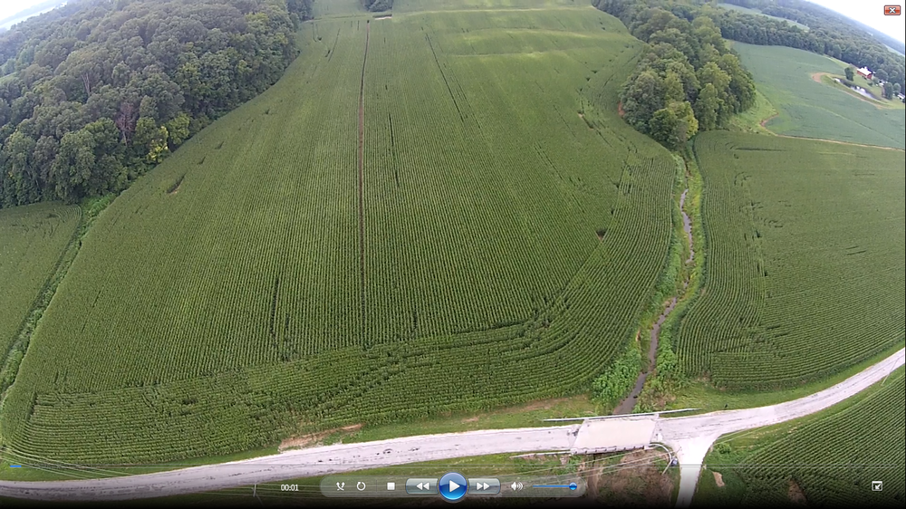 drone image of corn local.png