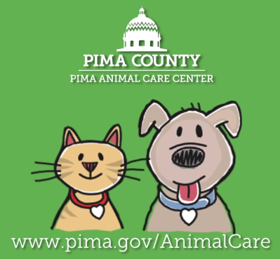 Pima County Animal Care Center: Tucson is also home to a huge population of homeless animals, many of whom find their way here. Through their army of volunteers and trained staff, they shelter and care for hundreds of animals.