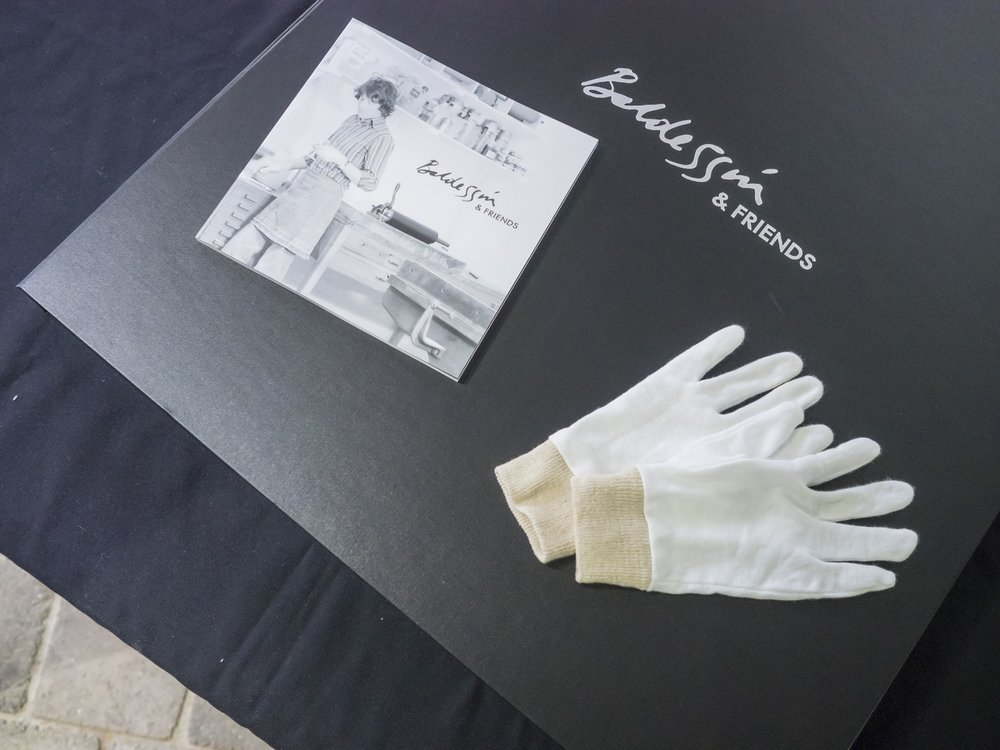 folio cover book gloves coul.jpg