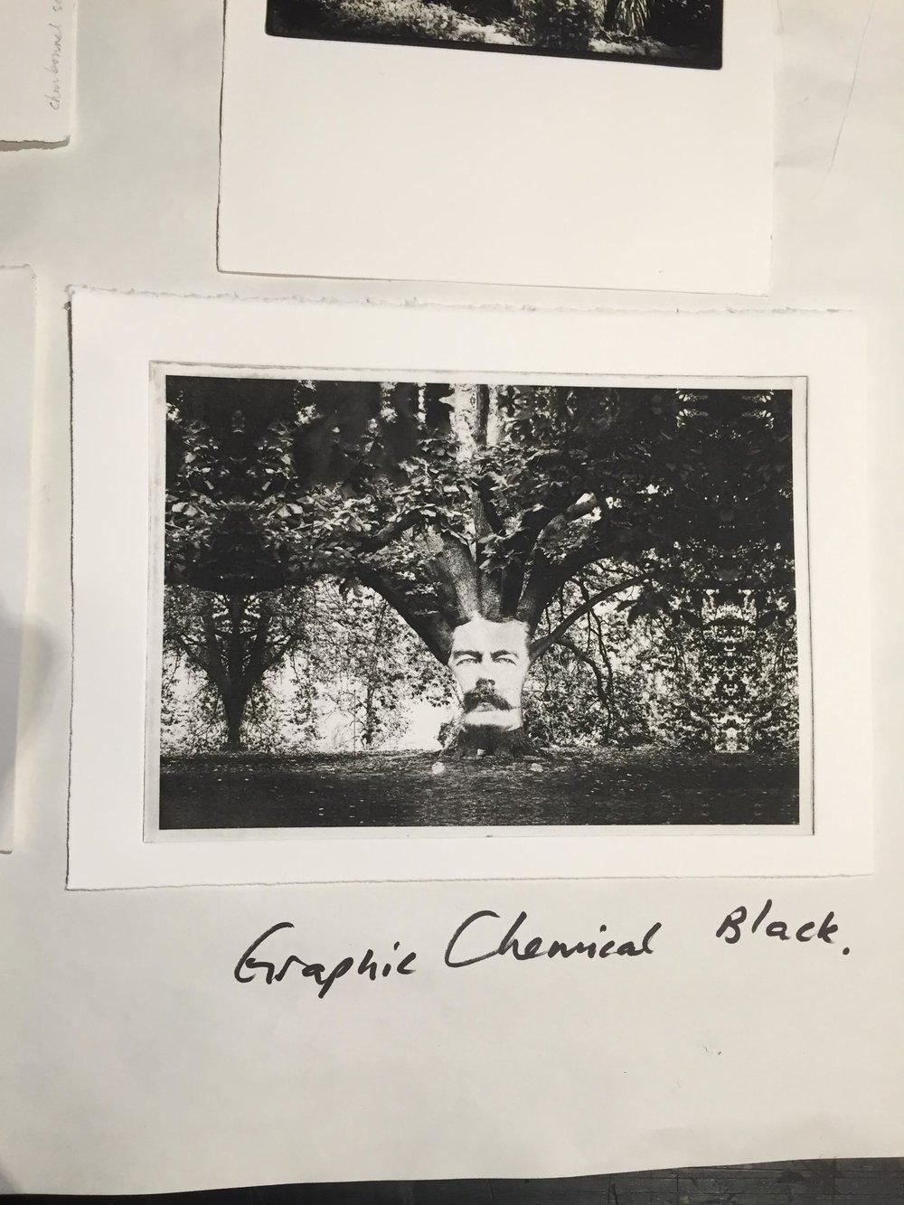 Photogravure proof