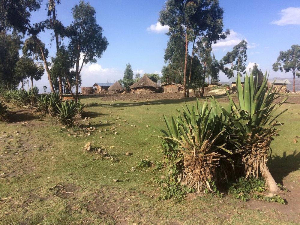 andre-slob_ethiopia_trip_travel_tulkul.jpg