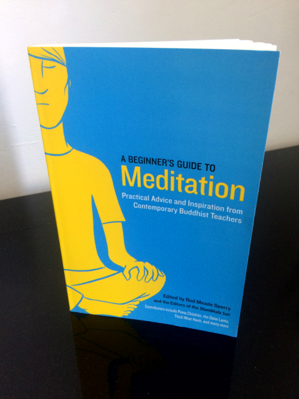 andre-slob_cover_meditation_shambhala_publications_cover_2.jpg