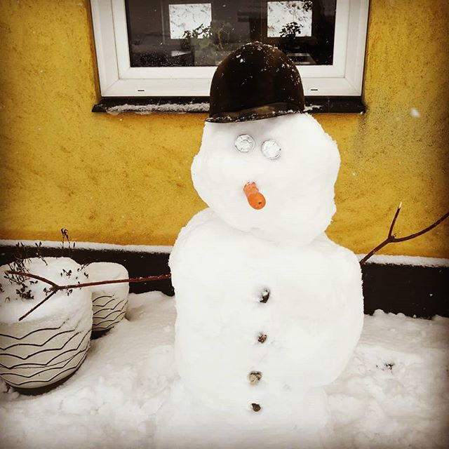 ❄️😍⛄ Snehilsen fra os på højgaarden 🌨️❄️