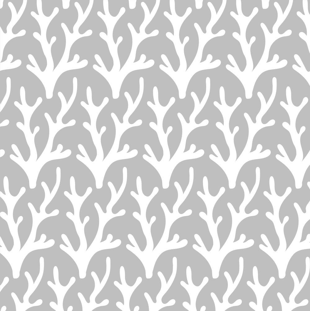 corals-05 (1).jpg