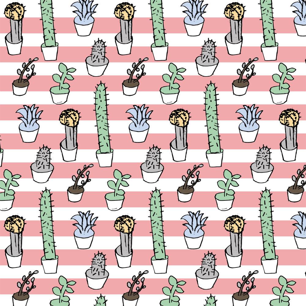 succulents 2-02.jpg