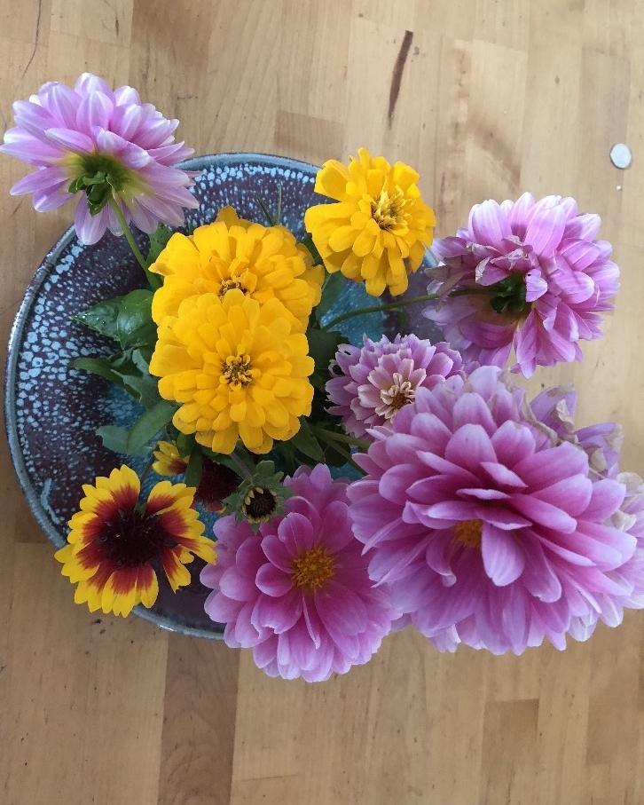 Flowers in one of my vases in Boston