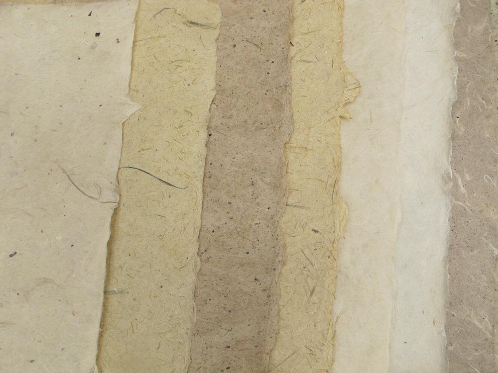 paper example 14_T.JPG