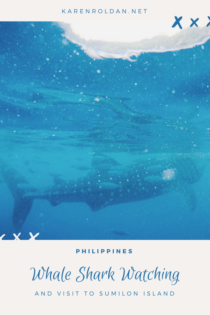 Whale-Shark-Watching-and-Sumilon-Island.png