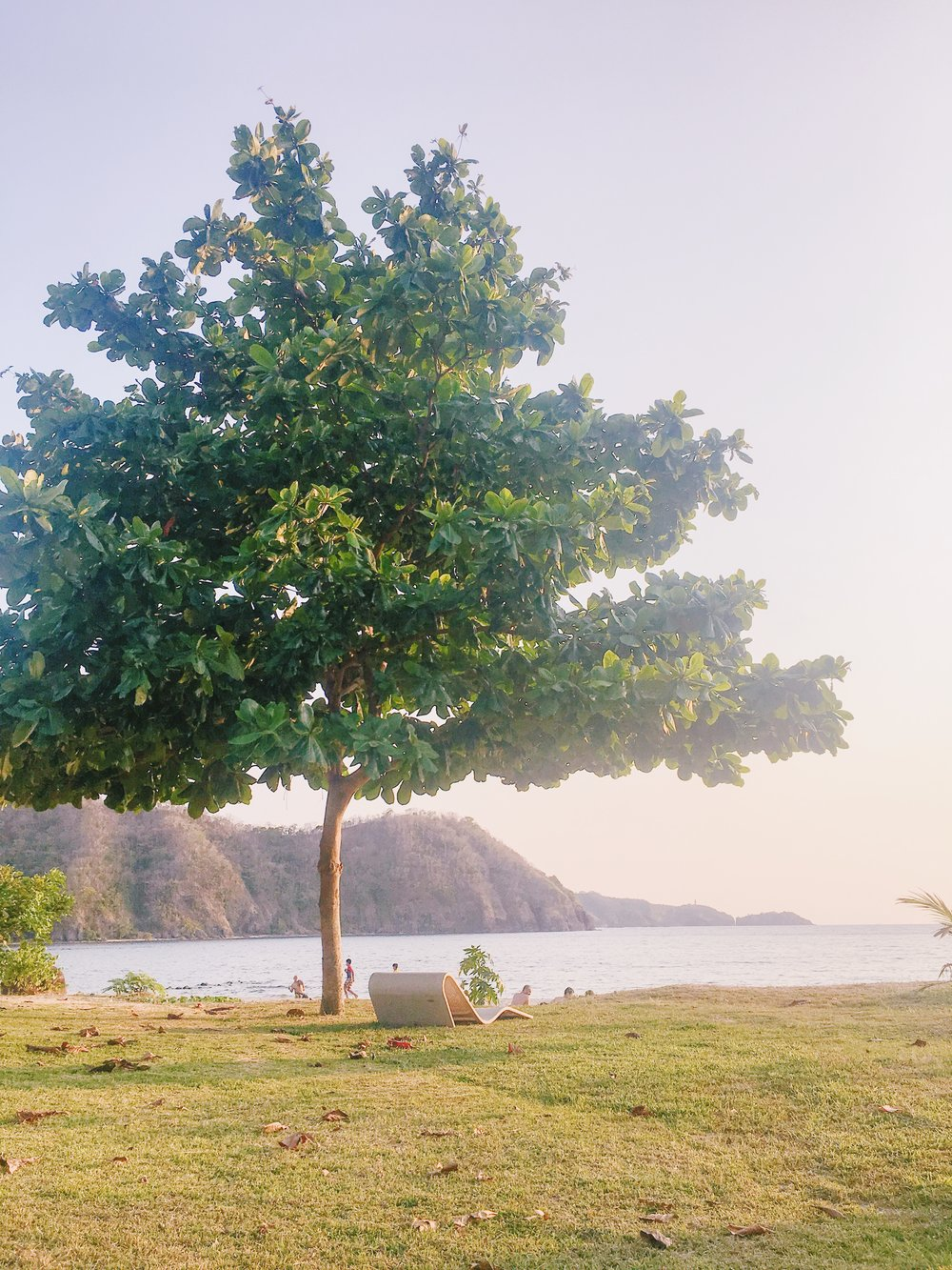 - If I am to come back here, you know where to find me. I like how that chair is located under the tree. What a perfect spot to bask under the sun. I can imagine myself listening to good music while reading a good book. Just the thought of it makes me excited.