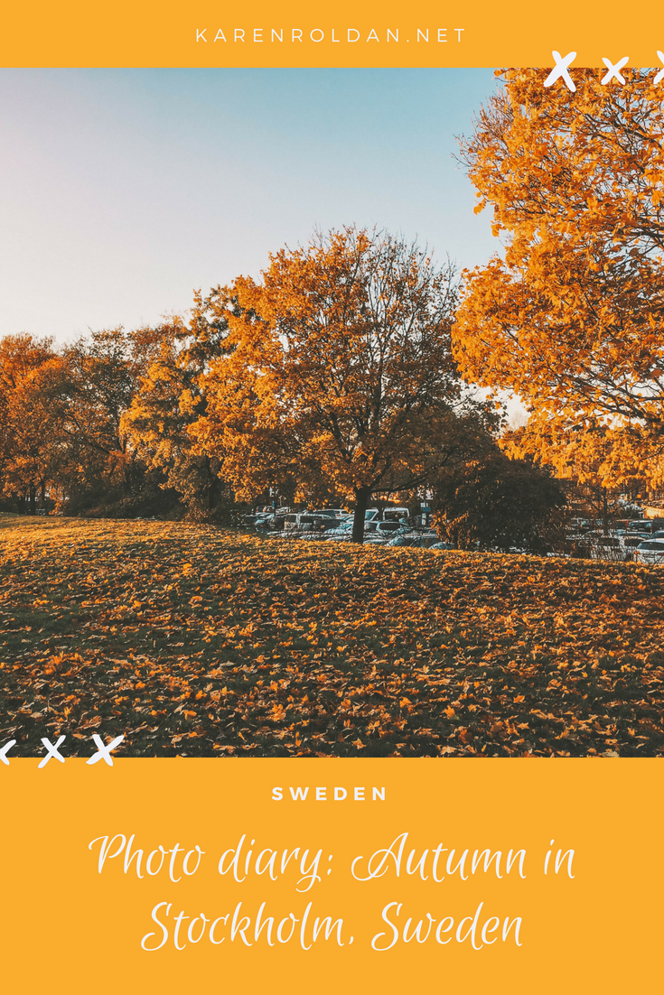 Looking back on my old photos that I took when I first visited Stockholm makes me realize how much I love autumn.  I wanted to take more photos, but my phone shuts down from the cold. I'm glad I experienced autumn in Sweden for a few days.