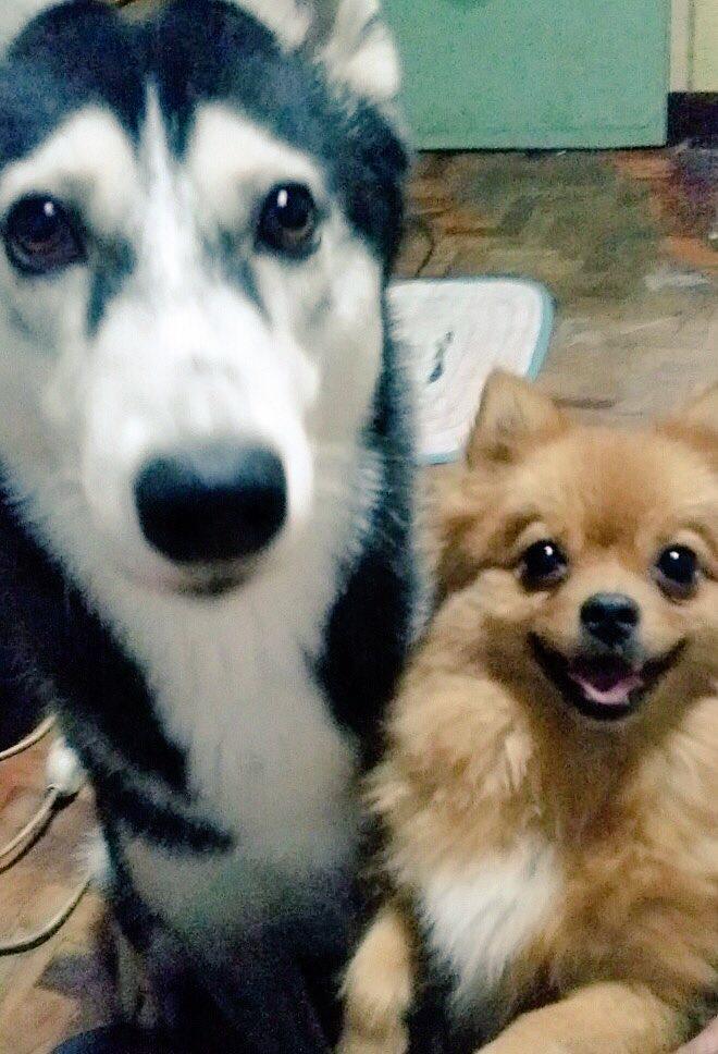Yumi & Aica.JPG
