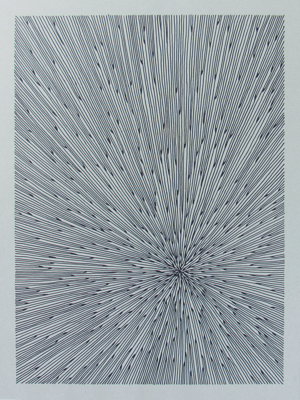 Seafan 22 , 2017, 18x24, marker and paper. available.