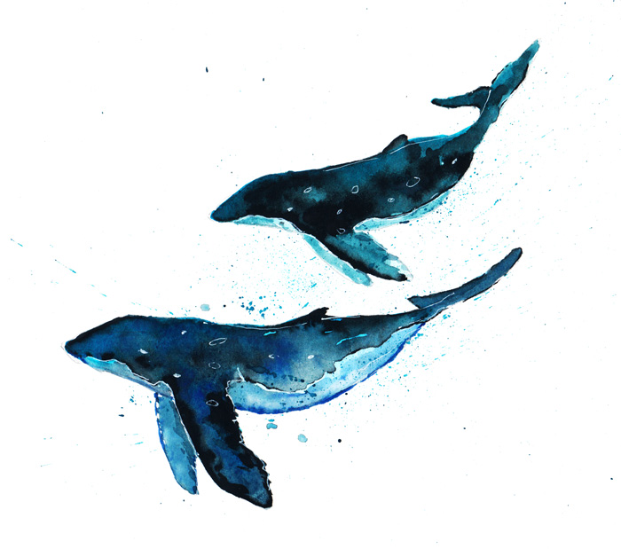 Whales-Copy-700.jpg