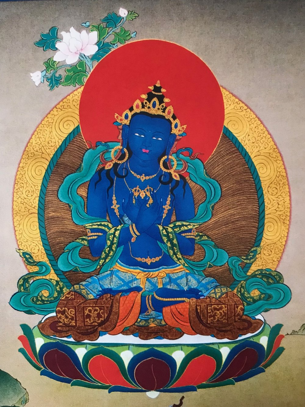 "- The Kalachakra Tantra is the most comprehensive and effective system within Tibetan Buddhism, valued by all schools as ' the King of Tantras' . The Jonang, however, is the tradition that has the specific focus of Kalachakra practice, and is the only tradition that holds the entire Kalachakra system, with the higher stages of the profound and unique completion practice known as the ""Six Vajra Yogas"