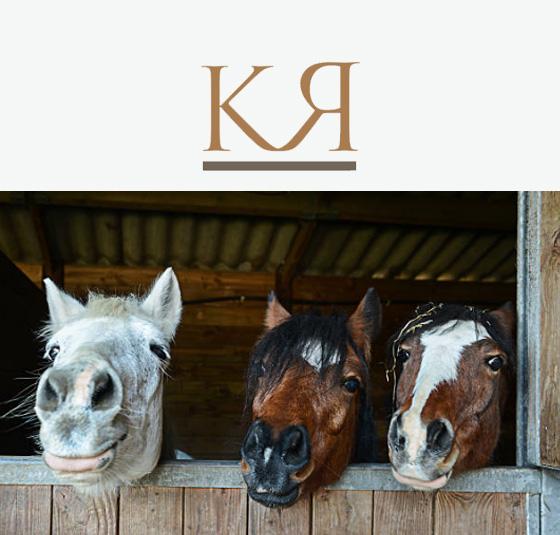 Kimball Ranch Header.jpg