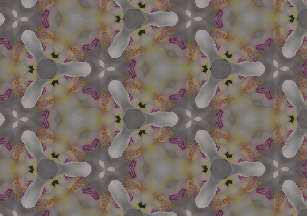 kaleidoskop-blüte.jpg