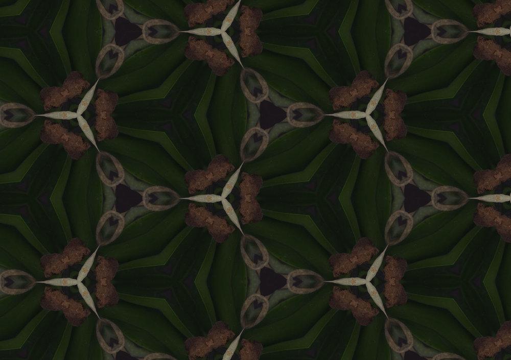 kaleidoskop-stiel.jpg