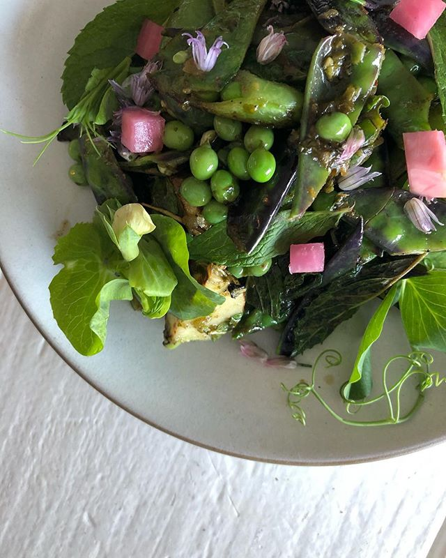 purple snow peas | english peas | sugar snap peas | tokyo turnips | zhoug | black tahini - very limited special tonite - - plentiful next TUES / WED -