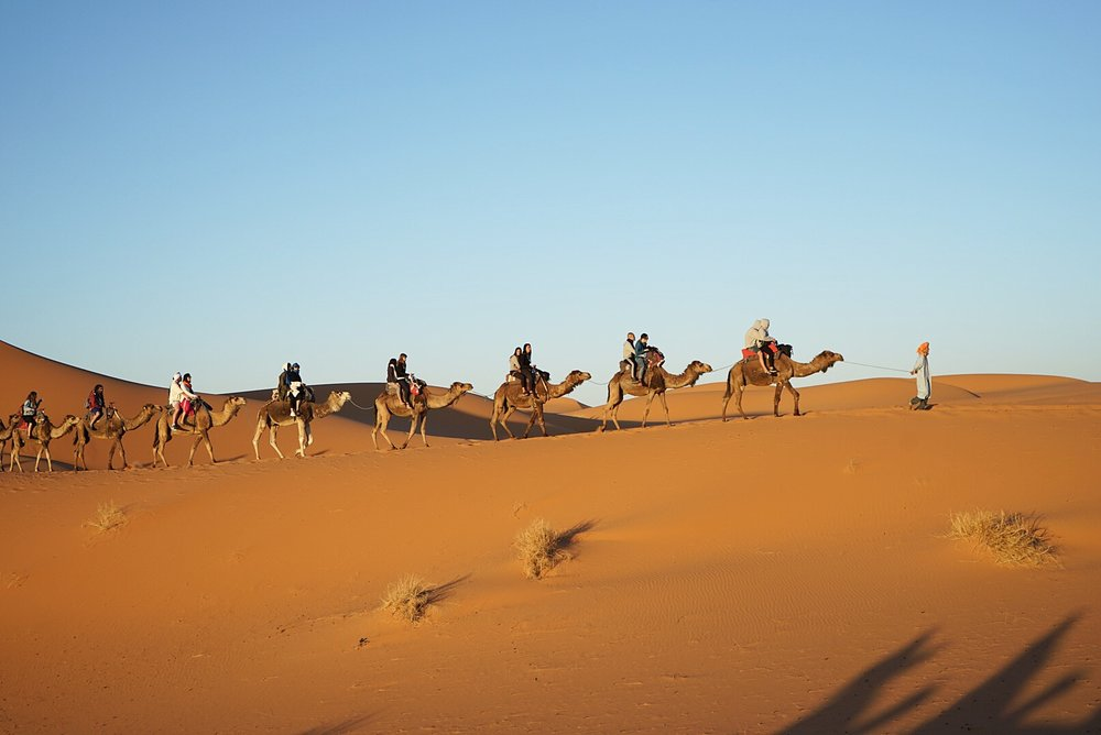 We rode our camels back from the berber camp for sunrise
