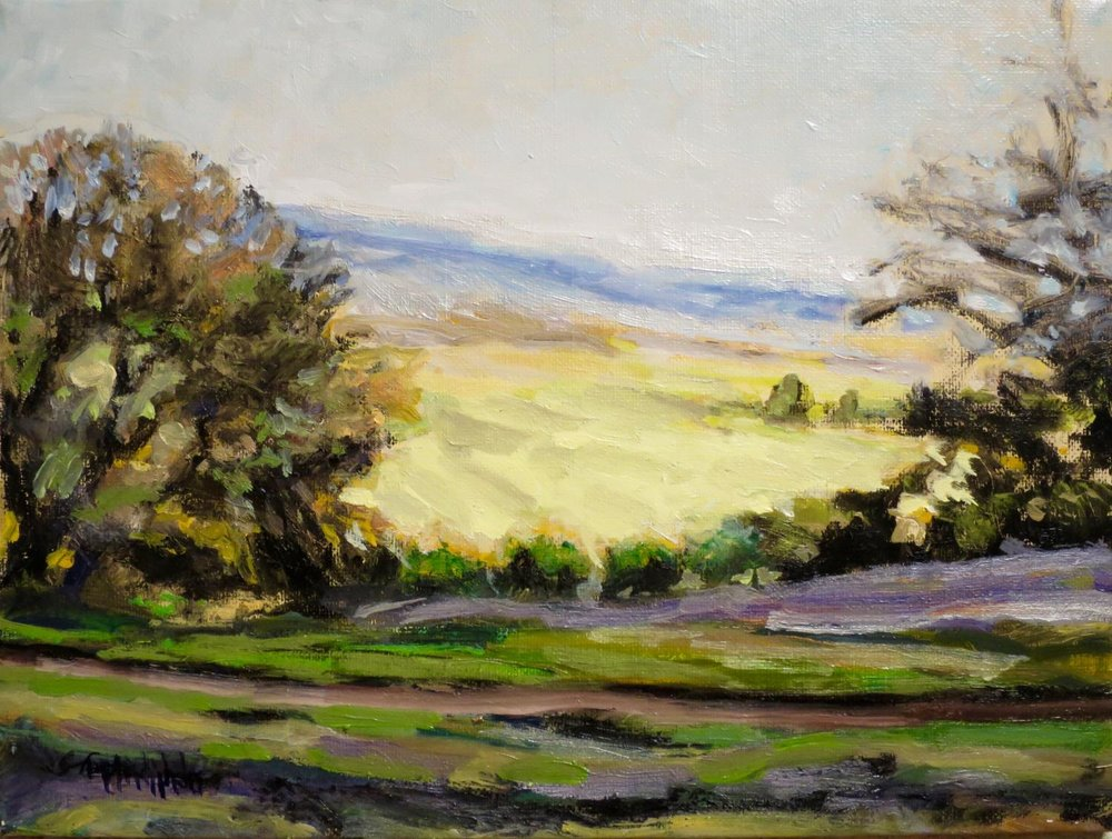 """Luminous Fields"""