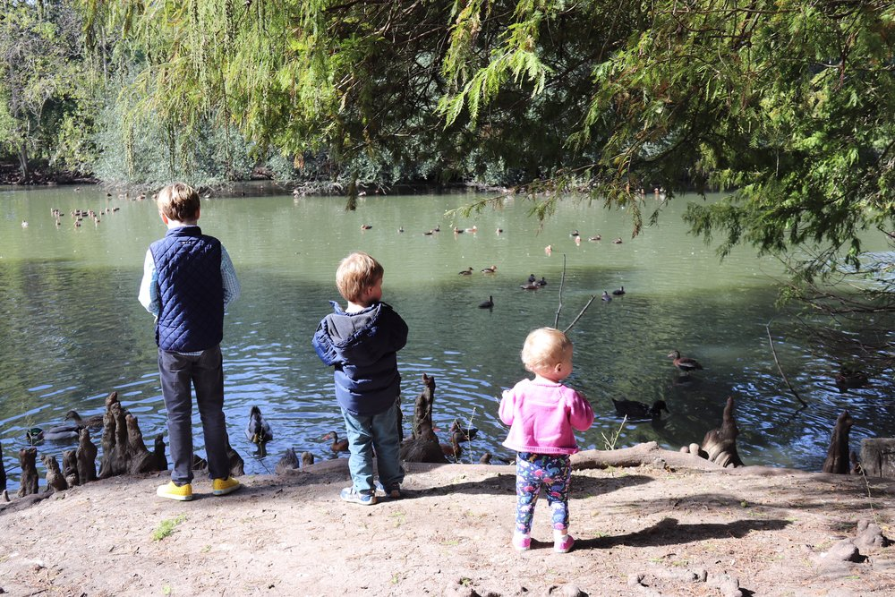 Friends recs are the best recs:  Sure, Audubon Park in New Orleans is an obvious kid-friendly destination in New Orleans. But thanks to a local acquaintance, we came prepared with stale bread to feed the ducks, making this adventure even more memorable.