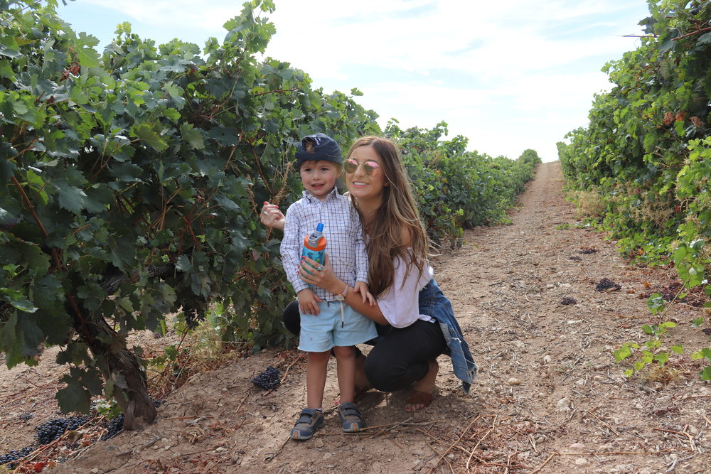 babysitters-on-vacations-1.jpg