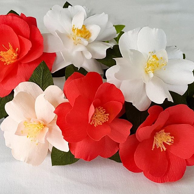 Camellias somehow remind me of Christmas in the South.  #paperflowers #camellia #christmas