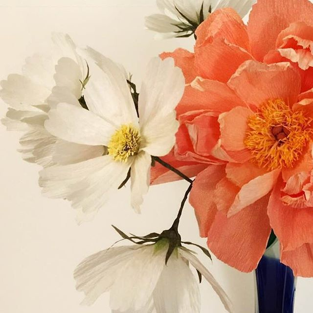 Peony with cosmos. One of my favorite combinations.  #paperflowers #peonies #cosmosflower