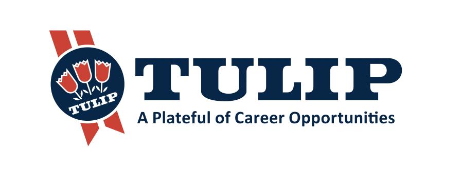 Get A Graduate Job at Tulip