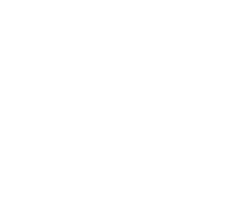 Scopa-Logo-white-v-sm.png