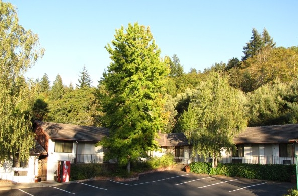 HUMBOLDT REDWOODS INN - Consider us a best choice for comfort and value during your next road trip, healing retreat, or ecotourism adventure. Find out more here.