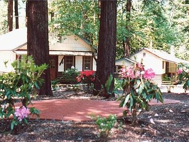 miranda gardens resort - Quaint cottages surrounded by lush flowering gardens, and framed by the majesty of the ancient redwoods. Located on the famous Avenue of the Giants, a tranquil year round retreat. Find out more about Miranda Gardens Resort here.