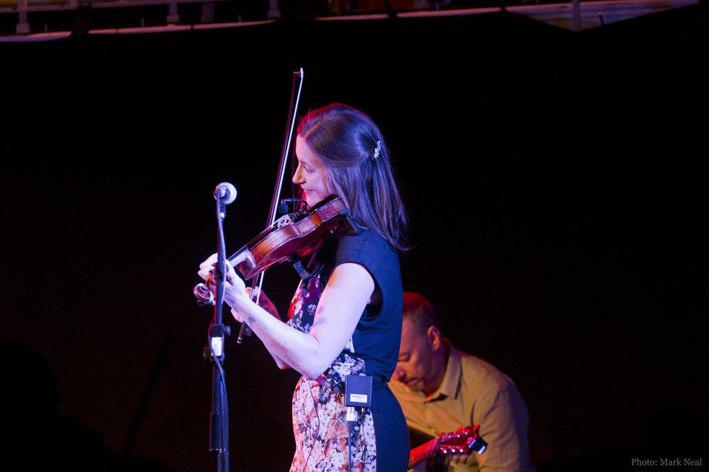 Fiddle201702.jpg