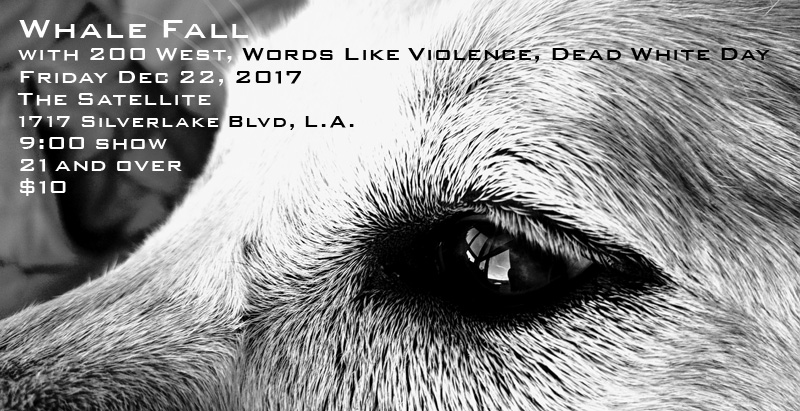 Whale Fall @ The Satellite, Los Angeles CA - 12.22.2017
