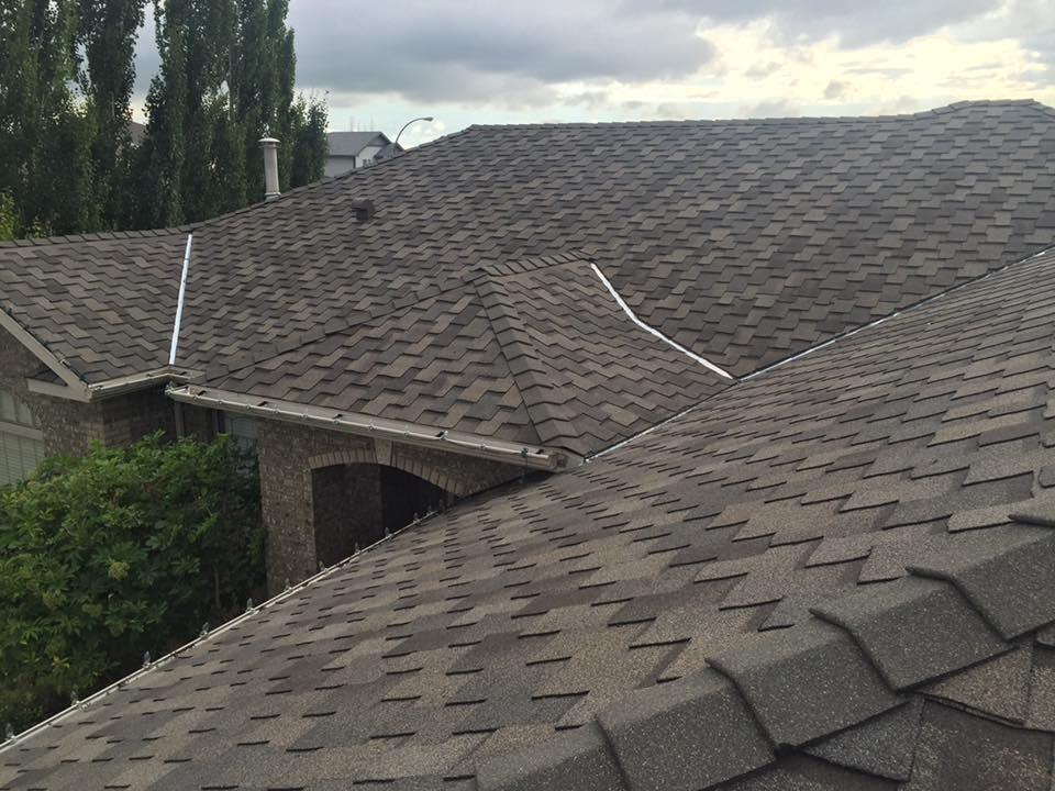 roof17.jpg
