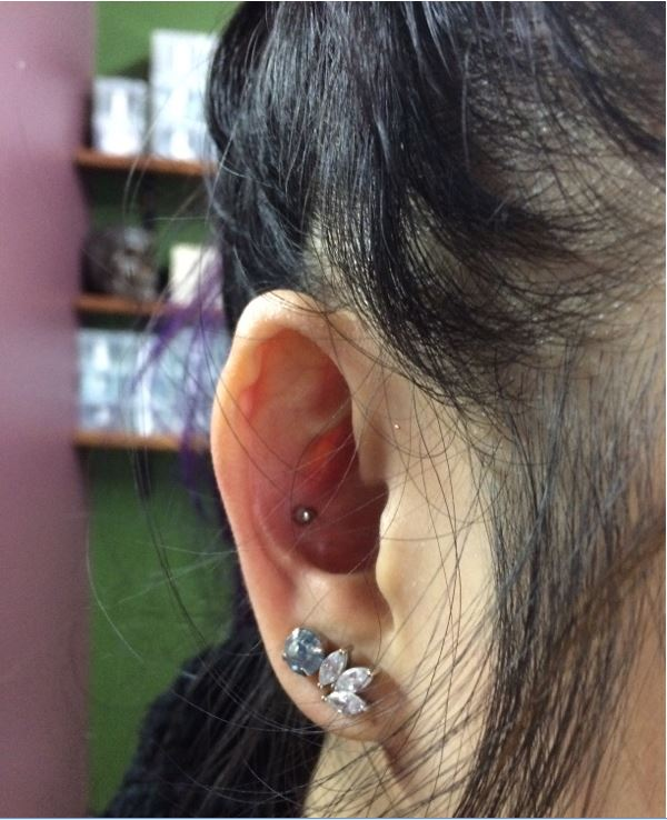 Conch Piercing - $60includes jewellery and aftercare