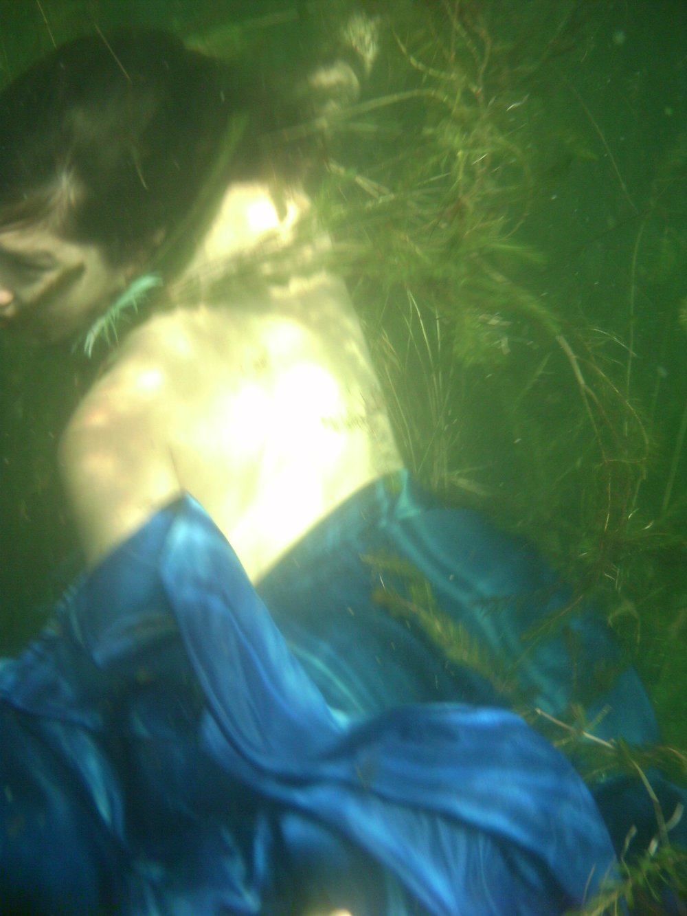 Venus of the Reeds | Mer Installation @ INArtsnw | 2011