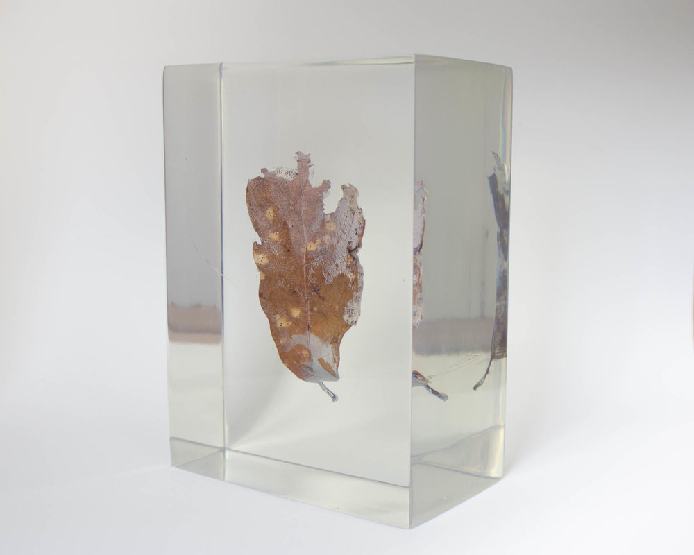 (Heirs of City  are the only material samples of the land project  Land Waste The : just two fragments of text and landscape encapsulated in resin.)