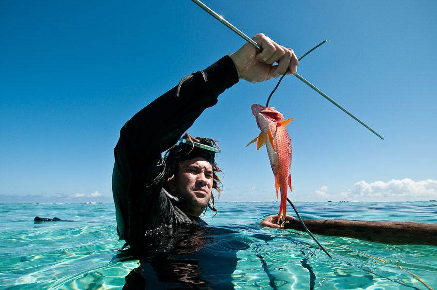 aitutaki island spear fishing