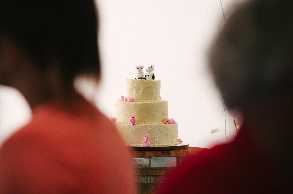 Farm wedding, St Mary's Leeston, wedding cake.