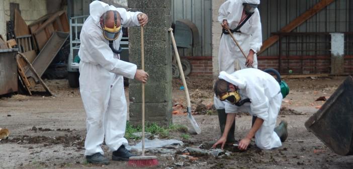 asbestos-removal-702x336.jpg