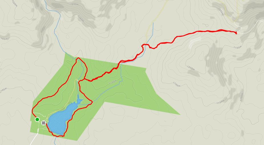 8km course map.PNG