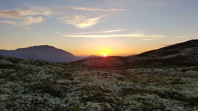 Vi unner oss en tur på fjellet midt i uka også, vi! 🍀 Solnedgangen sett fra #Eggevola. 😄  #drsommerglede #Fjellregionen #Tylldalen #Tynset #utno @destinationroros @turistforeningen