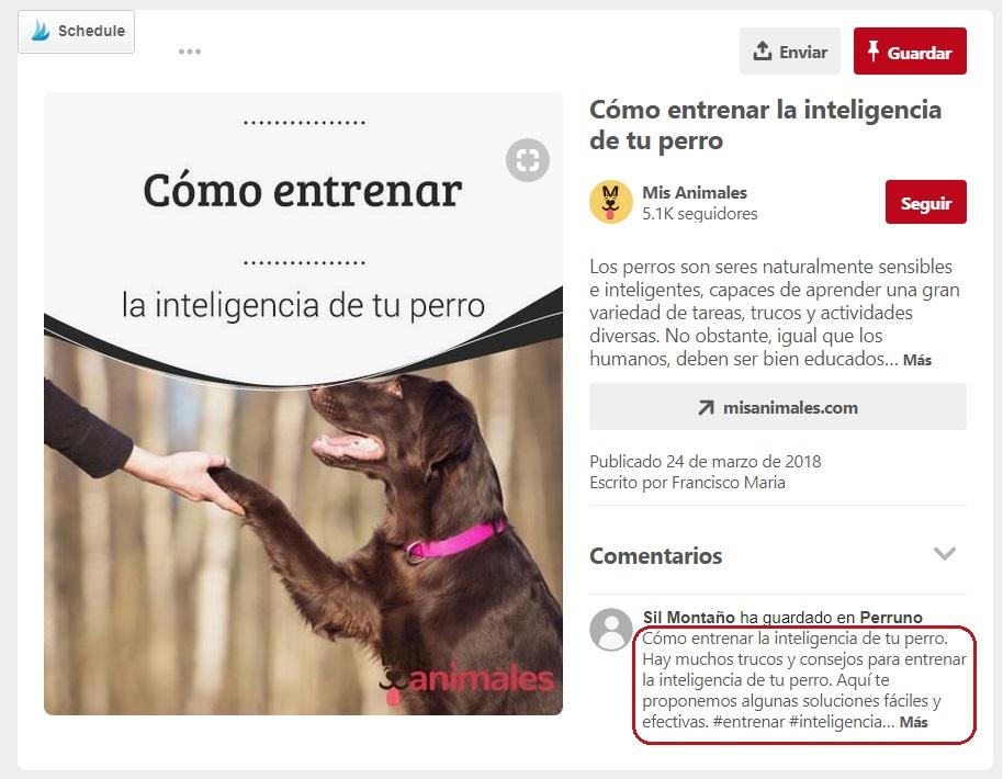 SEO en Pinterest: Descripciones y palabras clave