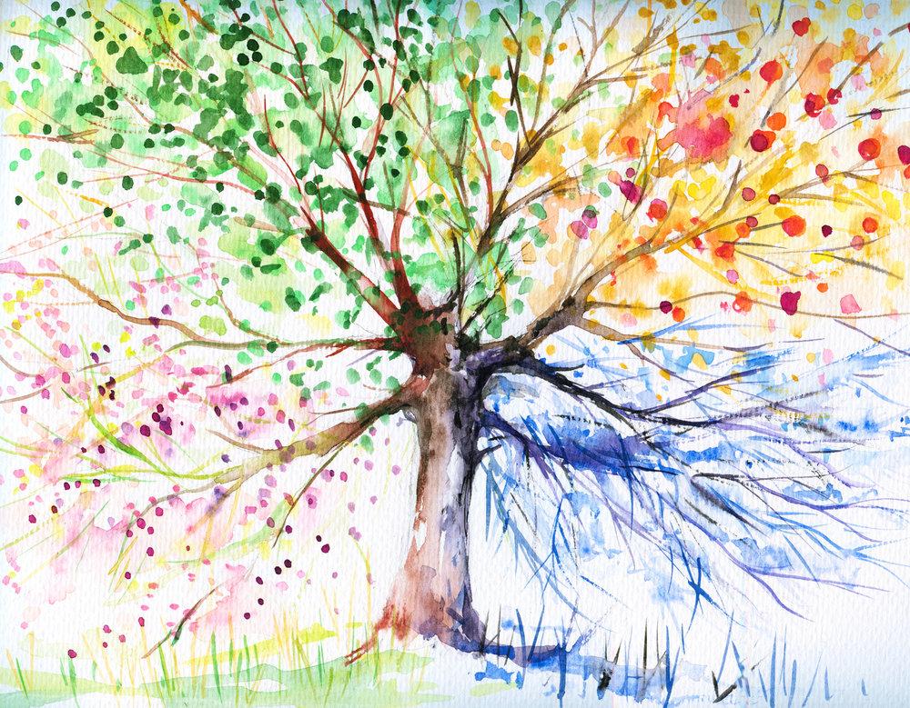 4 seasons tree.jpg