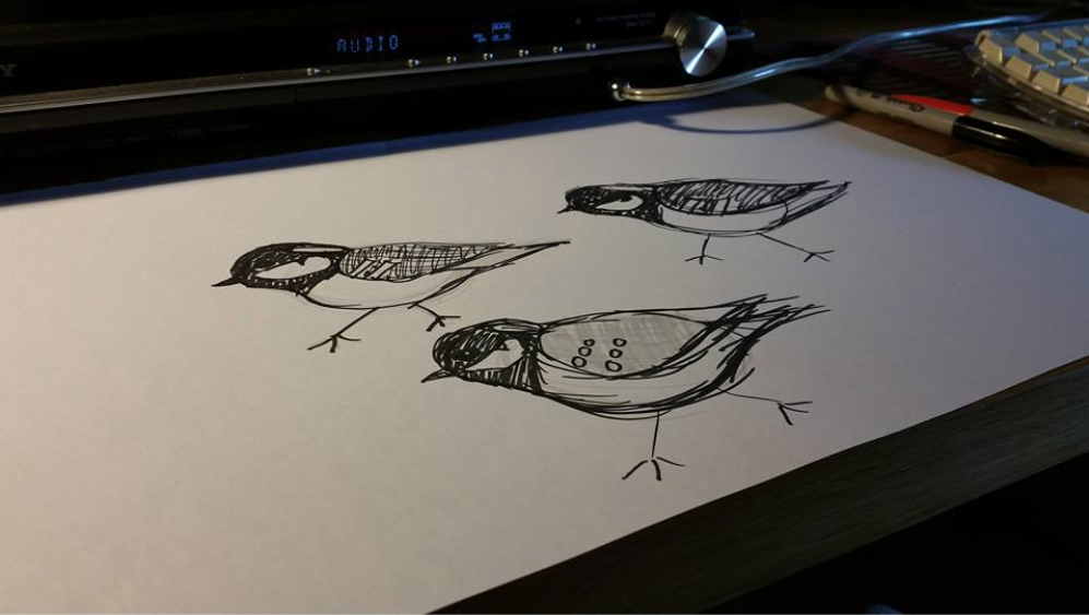Initial sketches for a cheeky little Coal Tit
